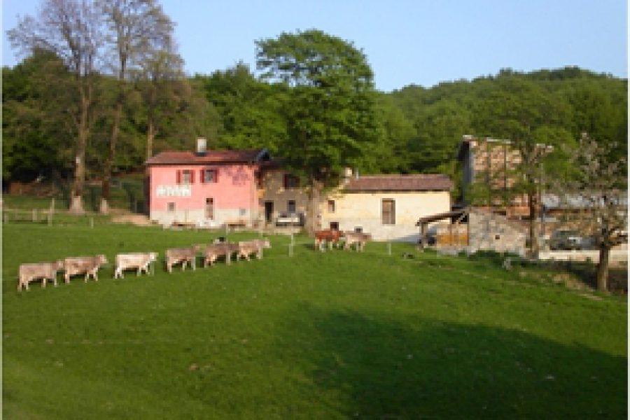 Agriturismo Alpe Grassa